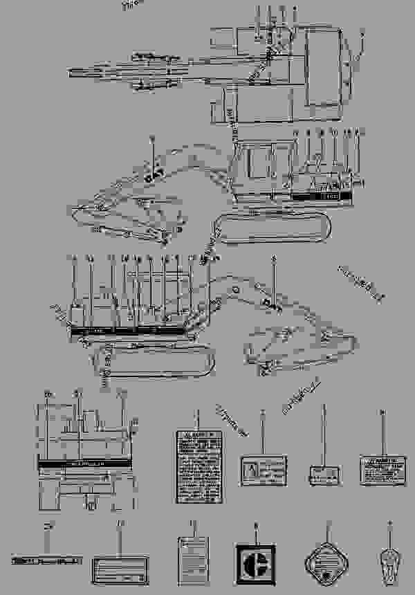 labeled parts of a caterpillar pictures to pin on